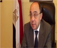 السفير المصري يلتقي وزير الصحة التشيكي