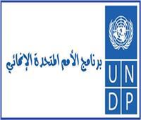 الجامعة العربية واليابان والأمم المتحدة يناقشون تنفيذ أهداف التنمية المستدامة