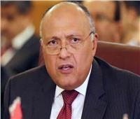 شكري: مشروع القرار المقدم لمجلس الأمن حول سد النهضة في مرحلة التشاور