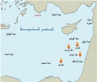 وزير الخارجية: منتدى غاز شرق المتوسط فرصة حقيقية لتحقيق التعاون في المنطقة