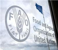 «الفاو»: انخفاض الطلب على السلع الزراعية بنسبة 1.2% سنويا