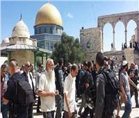 يقودهم «المتطرف يهودا غليك».. مستوطنون إسرائيليون يقتحمون المسجد الأقصى