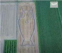 إيطالي يرسم كأس اليورو على 200 متر أرض زراعية| فيديو