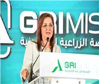 وزيرة التخطيط: التحول الرقمي يحظى بأهمية قصوى لدى الدولة المصرية
