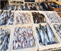 للمواطنين في عيد الأضحى..  فرصة لشراء وتخزين الأسماك