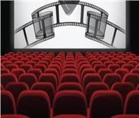 إيرادات السينما | «العارف» يتصدر و«ماما حامل» يتذيل القائمة