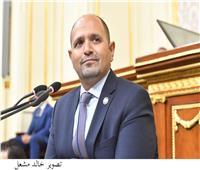 رئيس لجنة الطاقة بالنواب: «حياة كريمة» حلم سيوثقه التاريخ