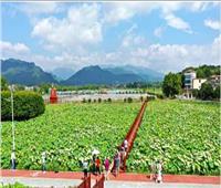 تكامل السياحة والزراعة ينشط «الاقتصاد الجميل»