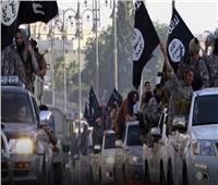 وكالة الاستخبارات الألمانية تحذر: تنظيم داعش والإخوان تهديد مشترك لأوروبا