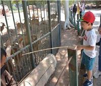 فتح حدائق الحيوان والأسماك والأورمان خلال عيد الأضحى