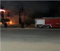 نشوب حريق في الأشجار والنخيل أمام مستشفى بني مزار العام بالمنيا| فيديو