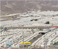 صعيد عرفات يتزين بـ60 ألف حاج.. والربوت لتعقيم المسجد الحرام