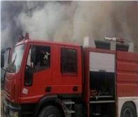 تفحم المواشي.. السيطرة على حريق حظيرة بالصف