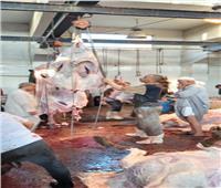 بسبب الأضاحي.. ارتفاع أسعار لحوم الماشية في أسواق بني سويف