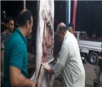 أقدم جزار في دمنهور: المرعى سر طعم اللحمة   فيديو