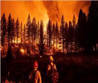 النيران تُحيل 20 ألف هكتار من غابات ولاية أوريجون الأمريكية إلى رماد
