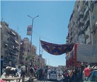 «حقنوها ونقلوها».. حقيقة إثارة بقرة شاردة الذعر بشوارع بورسعيد