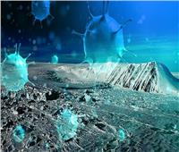 علماء يكتشفون فيروسات غير معروفة للبشر عمرها 15 ألف عام