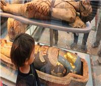 آلاف الزوار .. أنشطة مجانية للأطفال .. فعاليات متاحف مصر في العيد