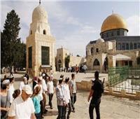 عشرات المستوطنين يقتحمون المسجد الأقصى| فيديو