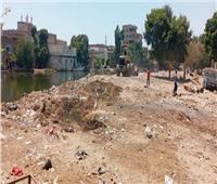 رفع 60 طن قمامة ومخلفات بقرية «طوخ الخيل» بالمنيا