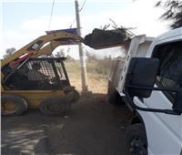 حملة نظافة بمركز ومدينة شبرا بابل في المحلة