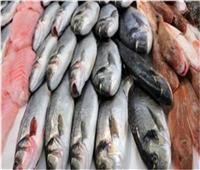 أسعار الأسماك في سوق العبور اليوم ٢٨ يوليو