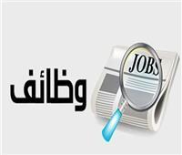 نجيب ساويرس يوفر 7000 وظيفة للشباب.. تعرف على كيفية التقديم