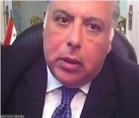 سفارة مصر في الأرجنتين تنظم ندوة افتراضية حول إفريقيا 