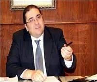 «شعبة المستوردين»: مناخ مصر الاستثماري ساهم في تحقيق التنمية الشاملة