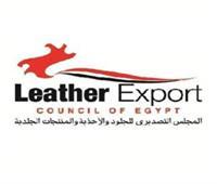 76.6 مليون دولار صادرات مصر من المنتجات الجلدية بالنصف الأول من ٢٠٢١