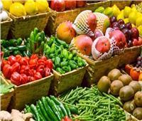 «الزراعة»:اكتفاء ذاتي من الخضر والفاكهة بنسبة 100%   فيديو