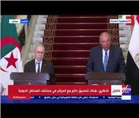 ننشر أهم تصريحات وزيري الخارجية سامح شكرى ورمطان لعمامرة | فيديو