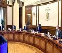 الحكومة: تشكيل لجنة وزارية عليا لوضع استراتيجية لجذب سياحة اليخوت إلى مصر..فيديو