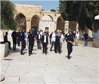 عشرات المستوطنين الإسرائيليين يقتحمون المسجدالأقصى