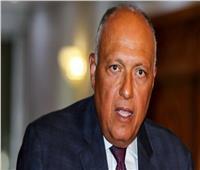 شكري: التشيك تعتزم استثمار 300 مليون دولار في مصر