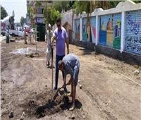 الانتهاء من تجميل مدرسة المنيا الزراعية