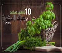 إنفوجراف| 10 أعشاب تساعد على حرق الدهون «بدون تعب»