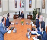الرئيس السيسي: دعم مصري كامل لمراحل تنفيذ سد «جوليوس نيريري» التنزاني