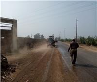 رفع الأتربة والمخلفات من جانبي طريق طنطا المحلة