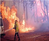 «إيطاليا»: رجال الإطفاء أخمدوا أكثر من 800 حريق جنوب البلاد