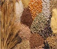 غرفة صناعة الحبوب: جميع السلع متوفرة والأسواق لم تشهد نقصا في أي منتج