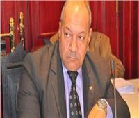 رئيس شعبة المخابز: رفع سعر الرغيف ضروري بعد اختفاء عملة «الشلن»