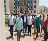 مسئولو «الإسكان» يتفقدون المشروعات بمدينتي بدر وحدائق العاصمة
