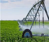 فهيم: منظومة الري الحديث توفر عمالة وأسمدة ومبيدات