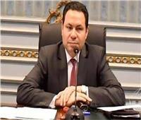 رئيس زراعة البرلمان: ارتفاع معدلات الصادرات الزراعية رغم كورونا
