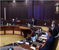 ياسمين فؤاد: مبادرة «اتحضر للأخضر» أول حملة بيئية يضعها رئيس في تاريخ مصر