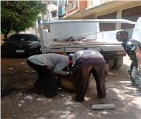 حي العجمي يزيل تعديات لـ«حمو بيكا» أمام منزله.. صور