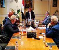 وزير قطاع الأعمال: نستهدف الوصول بمنتجات القطن المصري للأسواق العالمية
