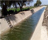 الموارد المائية: الري الحديث يوفر 60% من التكلفة على المزارعين | فيديو